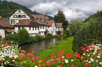 Black Forest and Baden-Baden Day Trip from Frankfurt