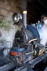 4-Day Private Tour to Darjeeling from Kolkata Including Train Ride and Zoological Park