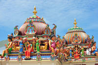 Private Chennai Sightseeing with Government Museum and Kapaleeshwar Temple