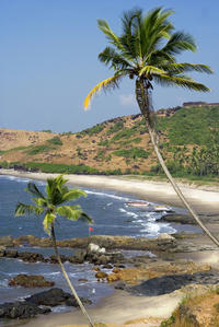 Small-Group Grand Island Adventure from Goa with Seafood BBQ Lunch