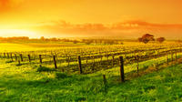 Full-Day Barossa Valley Tour from Adelaide  image 1