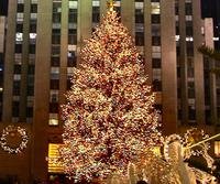 Rockefeller Center Christmas Tree-Lighting Party Picture