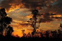 3-Day Kakadu National Park and Katherine Camping Tour from Darwin