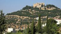 Roman Architecture and Natural Forests Tour from Amman