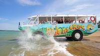 Land and Sea: DUCK  Amphibious Tour of Cairns