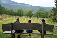 Columbia Gorge Waterfalls and Wine Tour from Portland