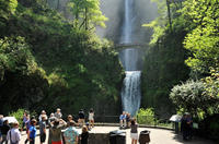Picture of Columbia Gorge Waterfalls and Wine Tour from Portland
