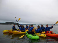 Seattle Shore Excursion: Private Outdoor Adventure and Wine-Tasting Tour