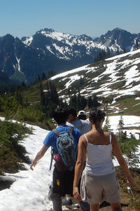 Small-Group Mt Rainier Experience Including Hiking or Snowshoeing and Lunch or Dinner