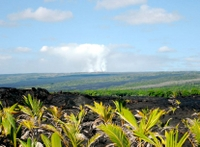 Private Tour: Secrets of Puna and Hawaii Volcanoes National Park