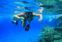 Roatan Shore Excursion: Underwater Museum Snorkel Tour