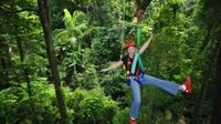 3-Day Rainforest Meets the Reef Multi Day Trip: Cape Tribulation, Daintree Rainforest and Reef Safari from Cairns and Port Douglas Private Car Transfers
