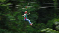Picture of Daintree Rainforest Zipline and Wildlife Habitat Day Trip