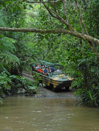 Kuranda Rainforestation Nature Park