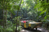 Kuranda Rainforestation Nature Park, Cairns Family Attractions