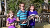 Florida Everglades Airboat Tour and Alligator Encounter with Lunch