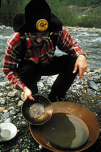 Alaskan Gold Discovery: Gold Mining and Panning at Gold Creek from Juneau