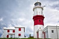 Bermuda Nature and Sightseeing Tour