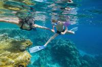 Bermuda Shore Excursion: Power Snorkel Adventure