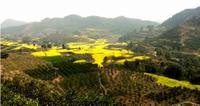 Private Tour Huanglongxi Ancient Town and Countryside Trekking from Chengdu