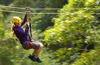 Picture of Big Island Kohala Canopy Zipline Adventure