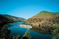 Picture of Douro Valley Small-Group Tour with Wine Tasting, Portuguese Lunch and Optional River Cruise