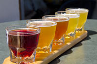 Small-Group Craft Brews and Bike Tour in San Francisco Picture