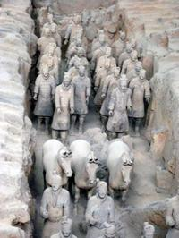 Private Tour of China's National Treasures: Giant Pandas and Terracotta Warriors in Xi'an