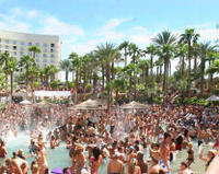 Las Vegas Pool Party Tour