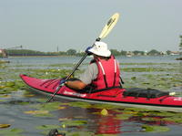 Guided Kayaking Tour on Niagara River from the US Side