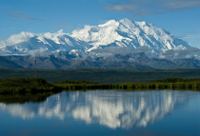 Picture of Day Trip to Denali National Park from Anchorage Including Scenic Flights