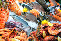Small-Group Shanghai Tour: Fish Market and Buddhist Temple