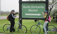 Niagara-on-the-Lake Cycle and Wine-Tasting Tour with Optional Picnic Lunch