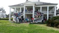 Oak Alley and Evergreen Plantation Tour from New Orleans