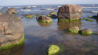 Day Tour to Lahemaa National Park from Tallinn