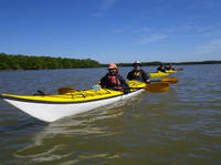 3 Day Everglades Kayaking and Camping Tour Photo