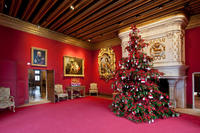 Private Full-Day Loire Valley Chateaux at Christmas from the town of Tours