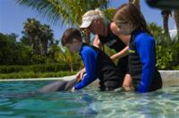 Dolphin Experience at the Miami Seaquarium