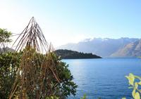 Lake Wakatipu Nature Walking Tour from Queenstown, Queenstown Natural Activities & Attractions