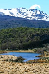 Ushuaia Shore Excursion: Private Tour of Tierra del Fuego National Park