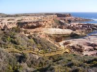 6-Day Eyre Peninsula Small-Group Camping Tour from Adelaide, Adelaide City Tours and Sightseeing