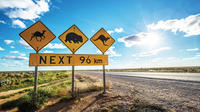 Perth to Adelaide in 9 Days - The Great Australian Wilderness Tour
