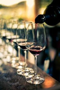 Private Tour: Gourmet Wine Experience from Punta del Este with 3-Course Lunch