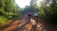 Iguaz� Bike Tour to the Yaguarundi Road from Puerto Iguaz�