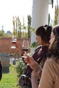 Maipú Luxury Wine-Tasting Tour from Mendoza Including Trapiche Winery