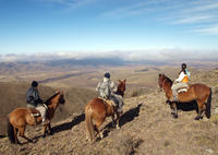 Mendoza Horseback Riding Tour with Traditional Argentine Asado image 1
