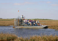 Picture of Small-Group Tour: Everglades Adventure Day Trip from Ft Lauderdale