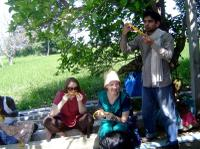 Small-Group Day Trip from Chennai: Countryside Farm Tour with Lunch