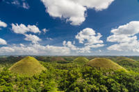 Bohol Highlights Tour: Chocolate Hills, Tarsier Spotting and Loboc River Cruise