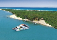 Stradbroke Island and Whale Watching Cruise Including BBQ Lunch